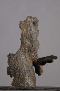 Tree Skin 02:  Bronze 40cm